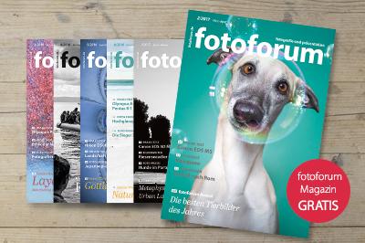 fotoforum Community, Bildergalerie