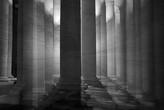 © Jutta Engelage, Im Wald // Workshop