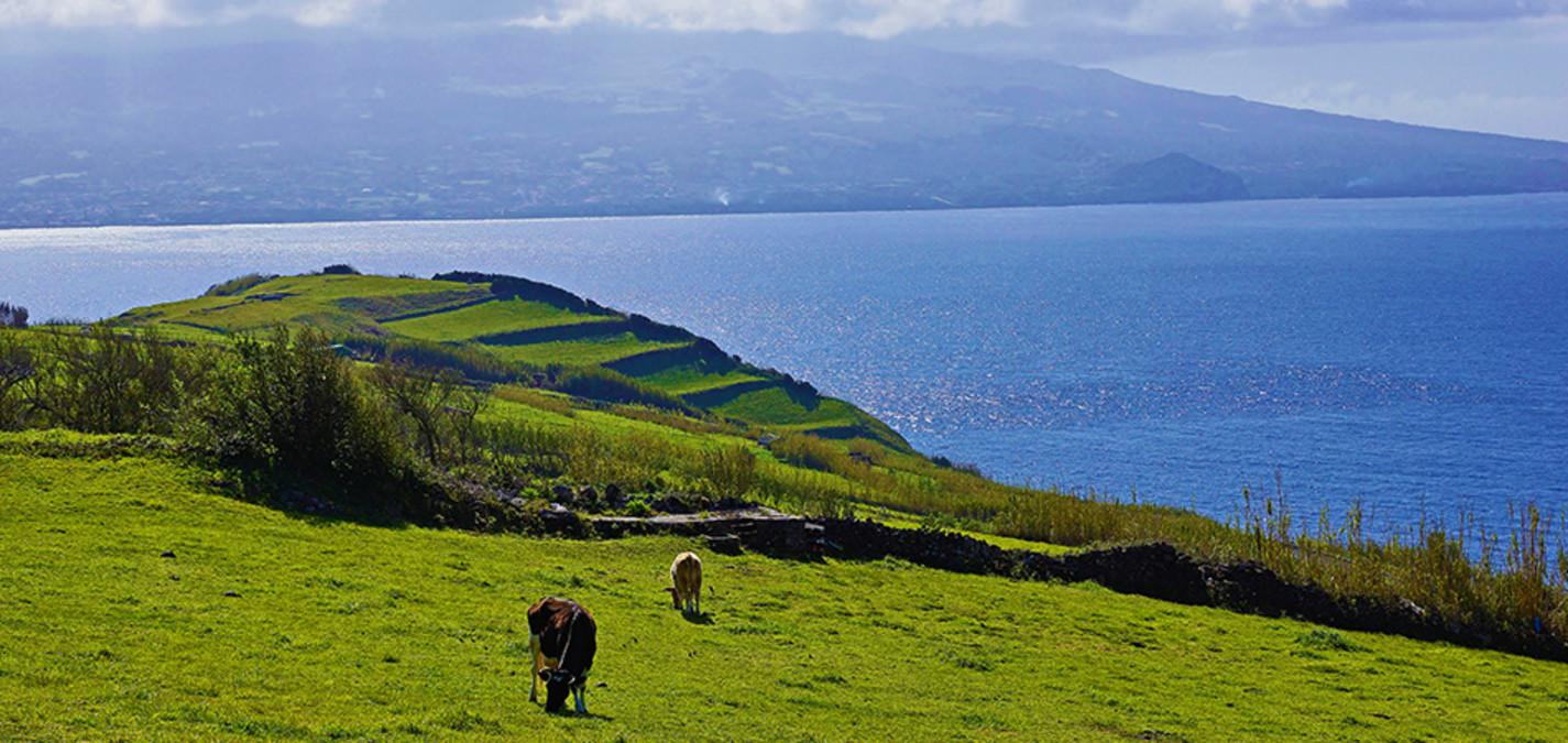 fotoforum Akademie // Fotoreise auf die Azoren