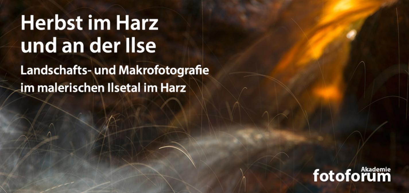 fotoforum Akademie: Landschafts- und Makrofotografie im malerischen Ilsetal im Harz