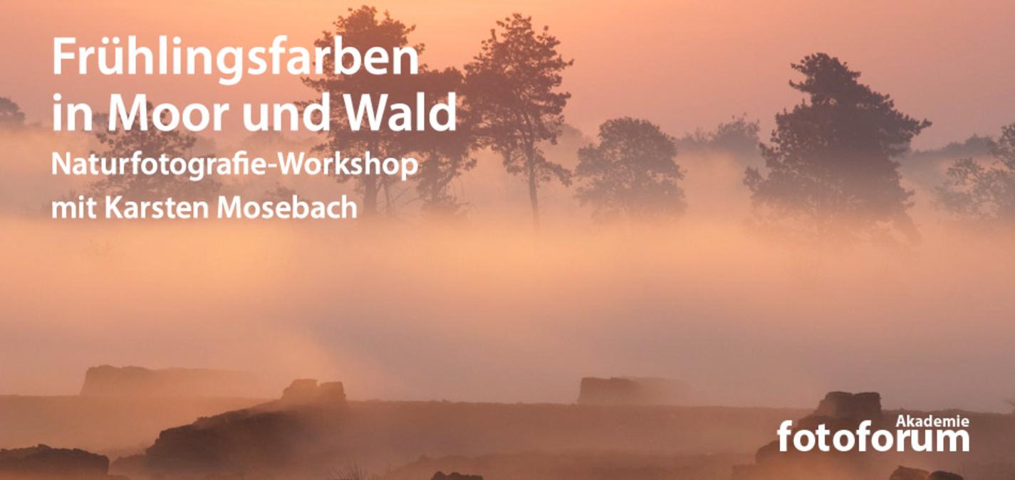 fotoforum Akademie: Naturfotografie-Workshop mit Karsten Mosebach