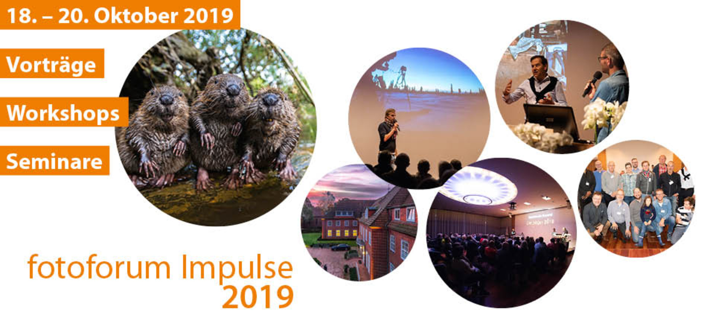 fotoforum Impulse 2019