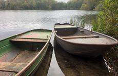 fotoforum Akademie: Fototour im Dünnwalder Wald mit Joachim Rieger